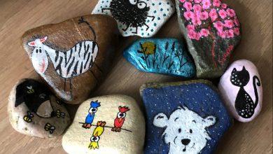 Photo of Happy stones brengen geluksmomentjes